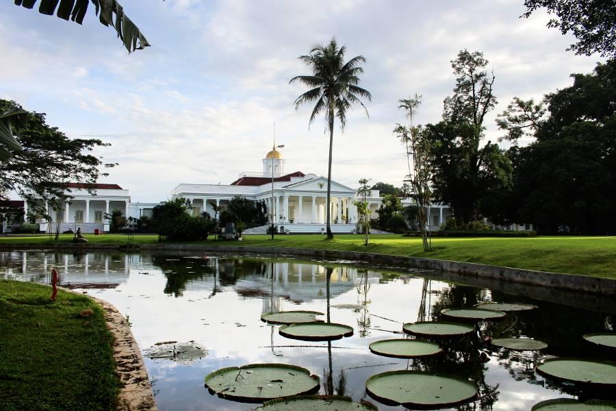 Cara Ke Kebun Raya Bogor Dari Hotel Duta Berlian Menggunakan Angkot B