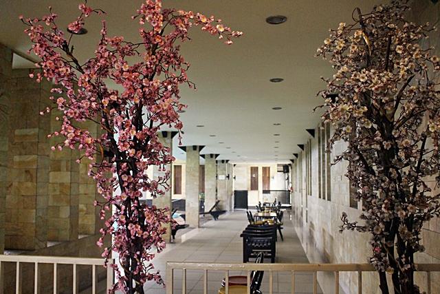 Kolam Renang Indoor Hotel Duta Berlian008
